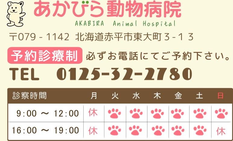 あかびら動物病院